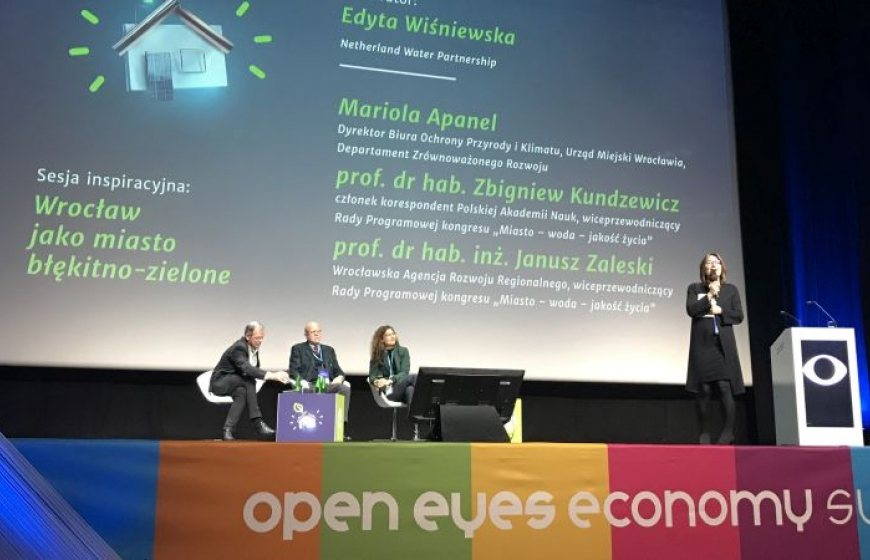 NWP's Edyta Wisniewska moderates a session during the OEES 2018 conference