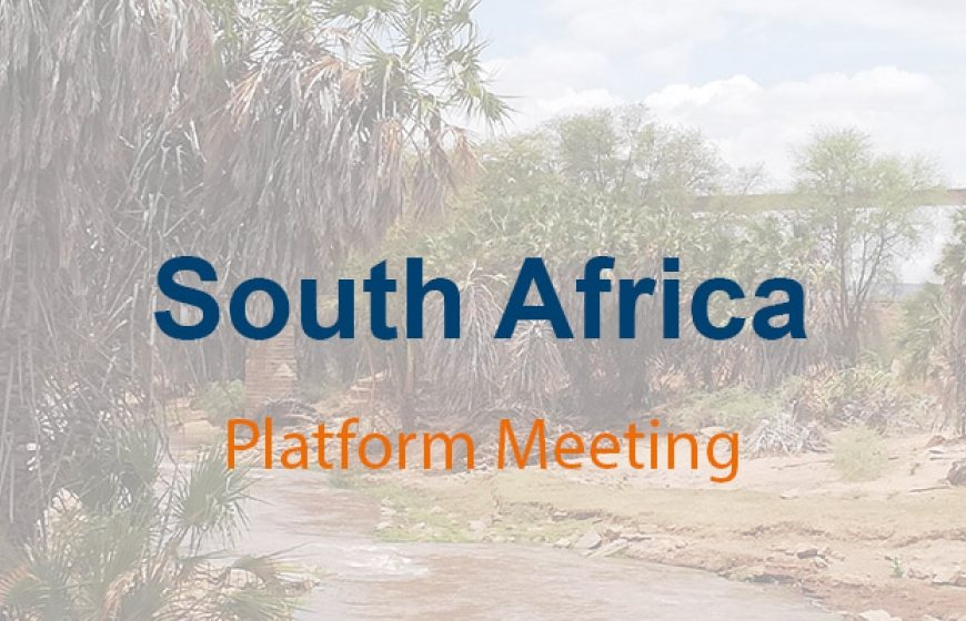 South Africa Platform Meeting 2020