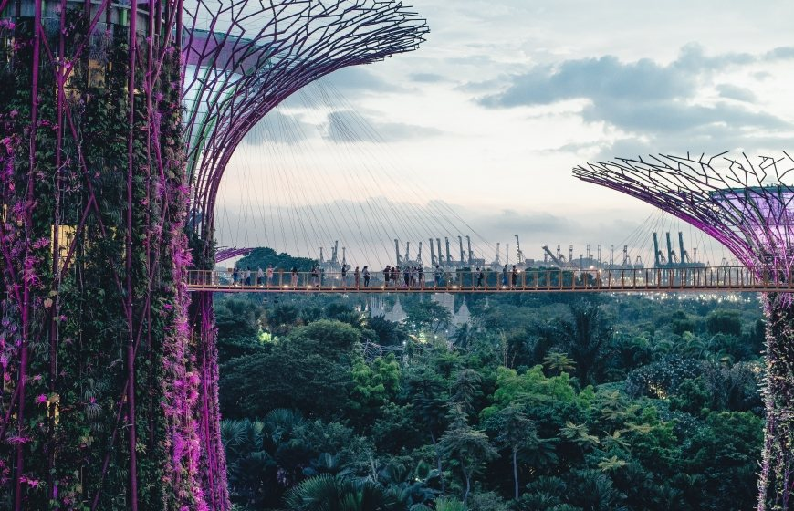 Solar-powered trees at Garden by the Bay, Singapore